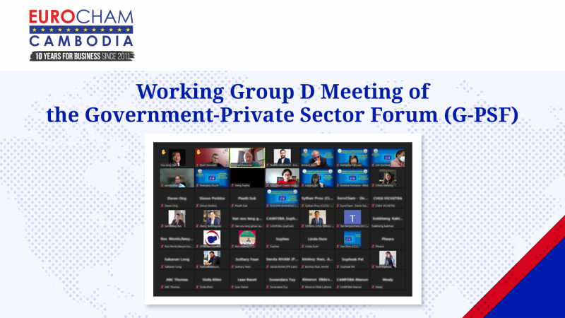 Working Group D Meeting of the Government-Private Sector Forum (G-PSF)