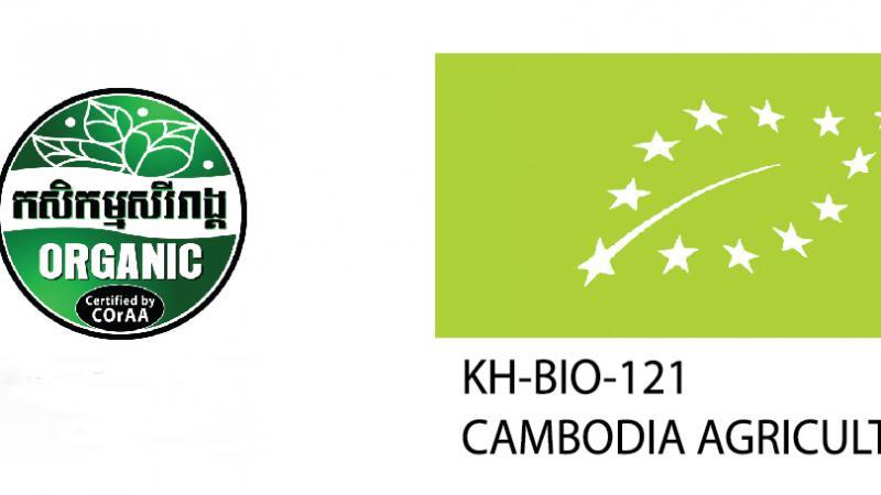 First International Organic Moringa certification in Cambodia.